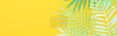 Foto de Vista superior de hojas tropicales verdes cortadas en papel brillante fondo brillante con espacio de copia, toma panorámica - Imagen libre de derechos