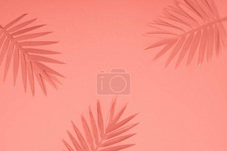 Photo pour Vue supérieure des feuilles de palmier coupées de papier tropical de corail, fond minimaliste avec l'espace de copie - image libre de droit