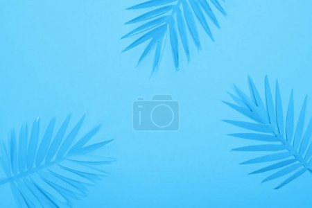 Photo for Top view of paper tropical leaves on blue minimalistic background with copy space - Royalty Free Image