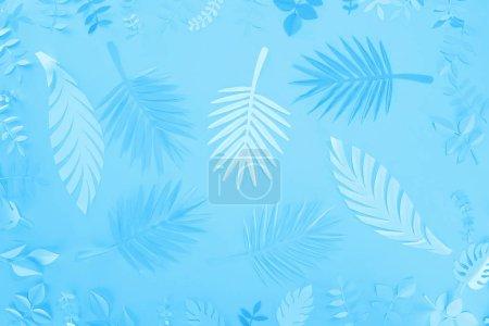 Photo pour Vue supérieure des feuilles tropicales de papier sur le fond minimaliste bleu - image libre de droit