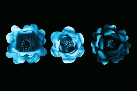 Photo for Top view of paper cut blue flowers isolated on black with copy space - Royalty Free Image