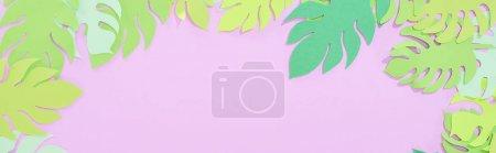 Foto de Vista superior de papel verde cortar hojas tropicales sobre fondo violeta con espacio de copia, tiro panorámico - Imagen libre de derechos