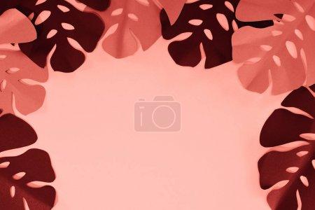 Foto de Marco de hojas de palma cortadas en papel tropical de coral, fondo minimalista con espacio de copia - Imagen libre de derechos