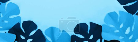 top view of paper cut tropical leaves on blue minimalistic background with copy space, panoramic shot