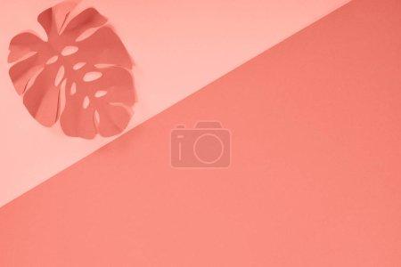 Photo pour Vue du dessus de la feuille de palmier coupée en papier corail tropical, fond minimaliste avec espace de copie - image libre de droit