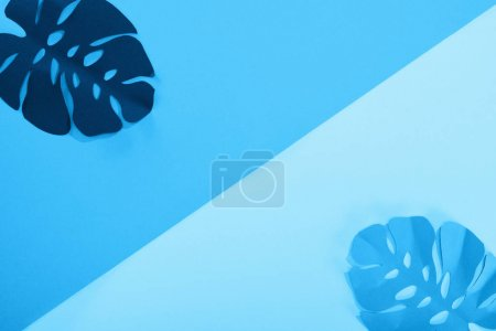 Photo for Flat lay with paper cut exotic leaves on blue minimalistic background - Royalty Free Image
