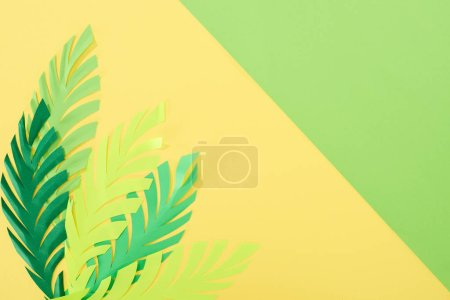 Photo for Top view of paper cut tropical leaves on yellow and green bright background with copy space - Royalty Free Image
