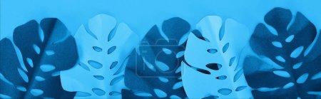 Photo pour Vue de dessus des feuilles de papier sur fond bleu minimaliste, panoramique - image libre de droit