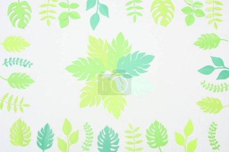 Foto de Vista superior del papel verde cortado hojas tropicales aisladas en blanco - Imagen libre de derechos