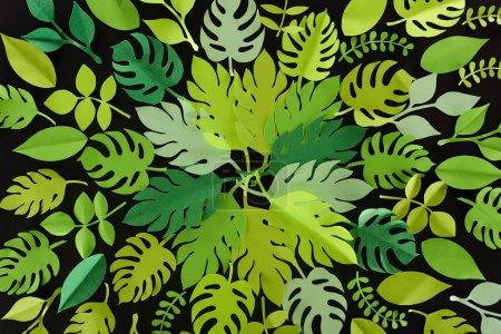 Photo pour Vue supérieure du papier coupé des feuilles vertes d'isolement sur le noir, modèle de fond - image libre de droit