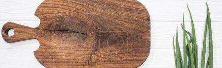 Photo pour Plan panoramique de planche à découper en bois et oignon vert - image libre de droit
