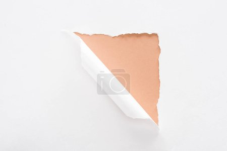 Foto de Papel blanco desgarrado y laminado sobre fondo beige - Imagen libre de derechos