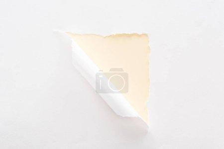 Foto de Papel blanco desgarrado y enrollado sobre fondo amarillo pastel - Imagen libre de derechos