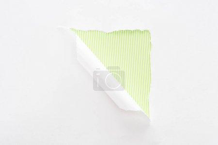 Foto de Papel blanco desgarrado y enrollado sobre el colorido fondo a rayas verde lima - Imagen libre de derechos