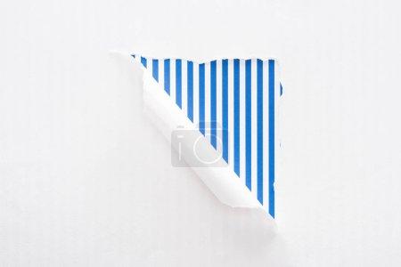Foto de Papel blanco desgarrado y enrollado sobre el fondo a rayas azules coloridos - Imagen libre de derechos