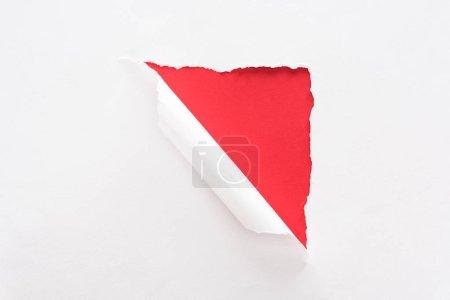 Foto de Papel blanco desgarrado y laminado sobre fondo rojo colorido - Imagen libre de derechos