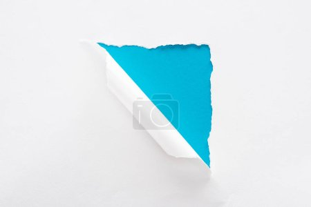 Photo for White torn and rolled paper on blue colorful background - Royalty Free Image