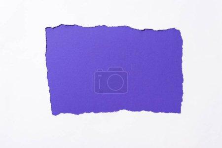 Photo pour Fond coloré pourpre dans le trou blanc déchiré de papier - image libre de droit