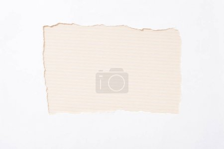 Photo for Beige striped colorful background in white torn paper hole - Royalty Free Image