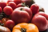 "Постер, картина, фотообои ""close up view of yellow and red tomatoes """