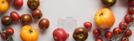 panoramic shot of scattered tomatoes with empty space in middle on marble surface
