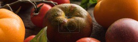 Panoramaaufnahme von Tomaten mit Spinat auf Holzoberfläche