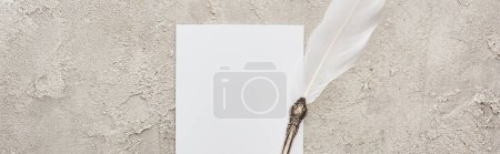 Photo for Panoramic shot of quill pen on white card on grey textured surface - Royalty Free Image
