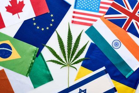 Photo pour Vue supérieure de la feuille verte de cannabis près des drapeaux nationaux sur le fond blanc - image libre de droit