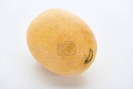 Photo pour Melon doux jaune mûr entier sur fond blanc - image libre de droit