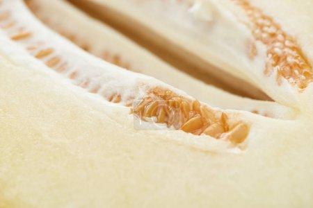 Photo pour Vue rapprochée du melon mûr sucré aux graines - image libre de droit