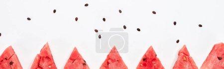 Photo pour Plan panoramique de tranches de pastèque fraîche et de graines sur fond blanc - image libre de droit