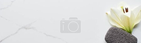 Photo for Panoramic shot of white flower and dark gray pumice stone on marble surface - Royalty Free Image