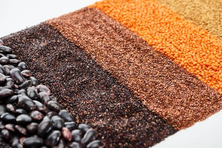 Photo for Black quinoa, beans, buckwheat and red lentil isolated on white - Royalty Free Image