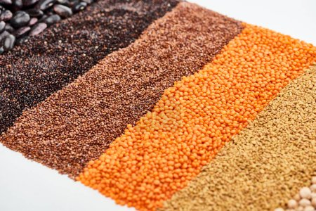 Photo for Black quinoa, buckwheat, lentil and beans isolated on white - Royalty Free Image