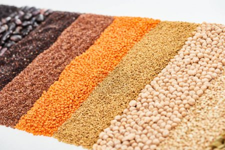 Photo for Black quinoa, buckwheat, lentil, chickpea and beans isolated on white - Royalty Free Image