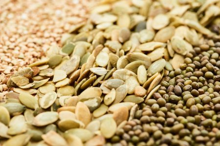 Photo for Close up view of raw pumpkin seeds near maash and green buckwheat - Royalty Free Image