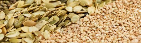 Photo for Panoramic shot of raw buckwheat and pumpkin seeds - Royalty Free Image