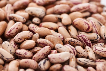 Nahaufnahme von ungekochten Pinto-Bohnen