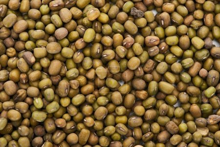 Photo for Top view of uncooked green mung beans - Royalty Free Image