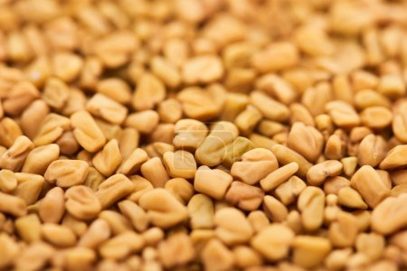 Photo for Close up view of raw organic bulgur - Royalty Free Image
