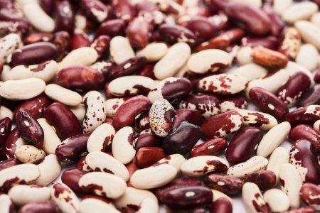 Photo pour Mélange de haricots blancs, noirs et tachetés - image libre de droit