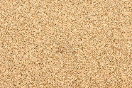 Photo pour Vue du dessus du quinoa blanc cru biologique - image libre de droit