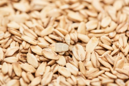 close up view of raw pressed organic oats