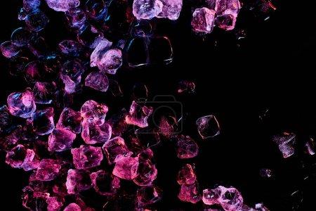 Photo pour Vue supérieure des glaçons congelés avec l'éclairage pourpre d'isolement sur le noir - image libre de droit