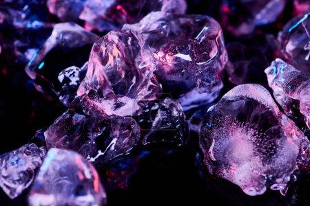 Foto de Cubitos de hielo congelados con iluminación púrpura aislada en negro - Imagen libre de derechos