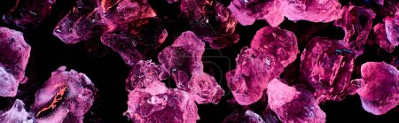 Photo for Panoramic shot of transparent ice cubes with purple illumination isolated on black - Royalty Free Image