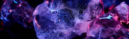 Photo pour Plan panoramique de glaçons transparents avec éclairage violet coloré isolé sur noir - image libre de droit