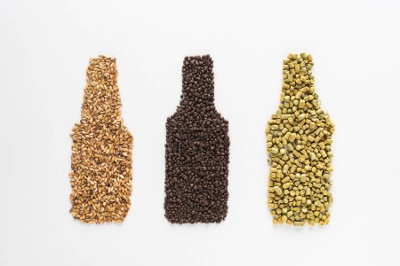 top view of  whole wheat and coffee grains near pressed hop shaped like bottles isolated on white