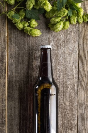 top view of beer with green hop on wooden surface