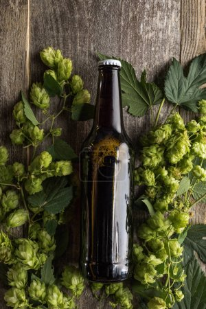 top view of beer in bottle in green hop on wooden background